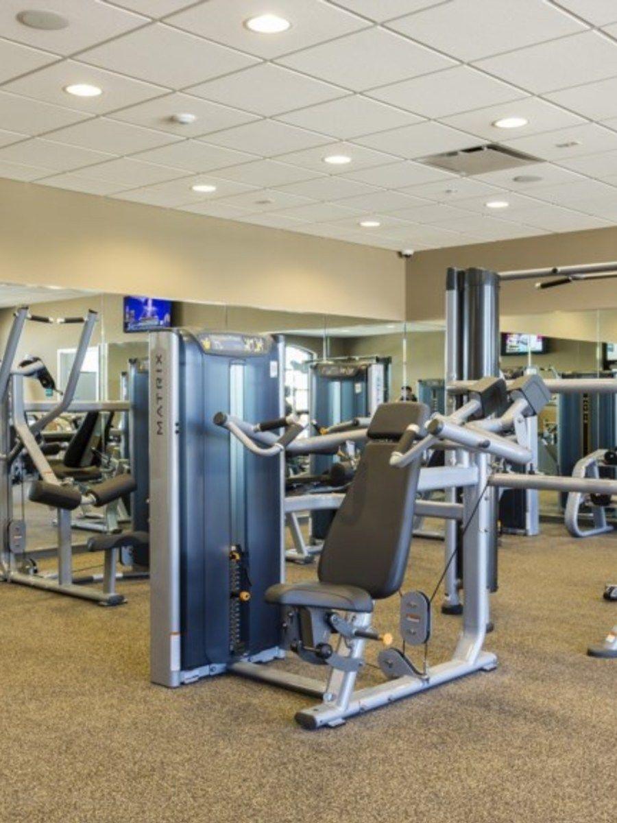 Portrait original gym